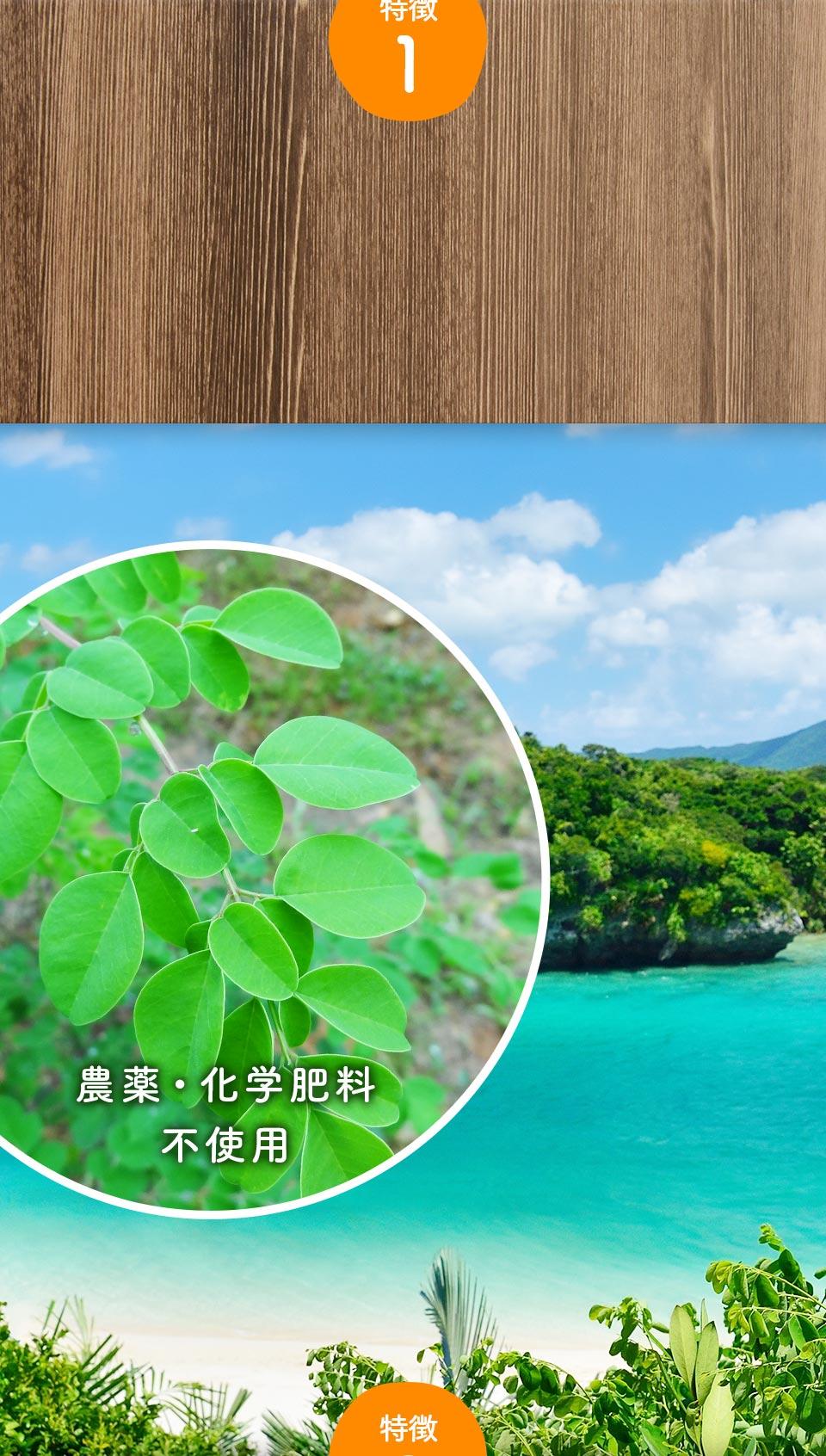 沖縄の契約農家から厳選されたモリンガを使用、農薬・化学肥料 不使用。